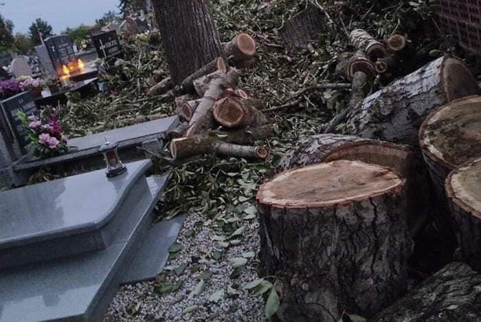 Jedno ze zdjęć opublikowanych w internecie przedstawiające skutek prac na cmentarzu. Czytelnik/Facebook